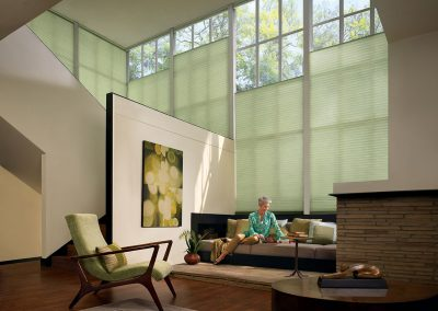 Duette Honeycomb by Hunter Douglas